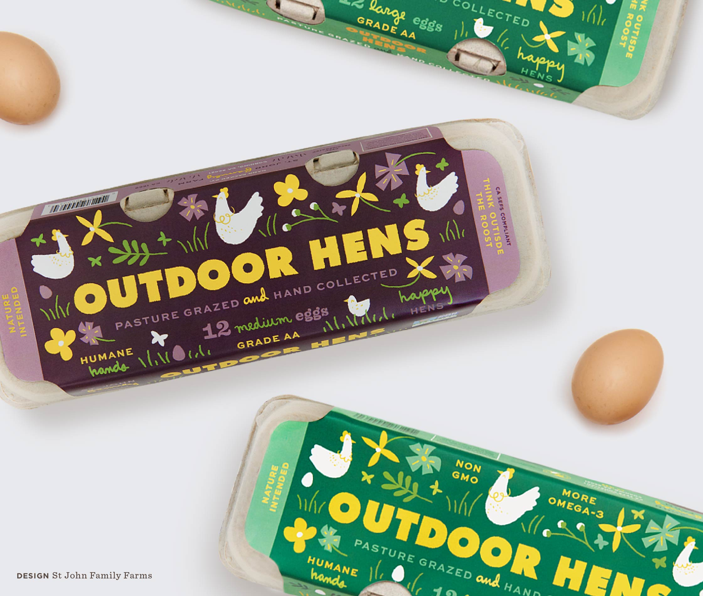 Large Egg Carton Packaging with illustration for St John Family Farm's Outdoor Hens