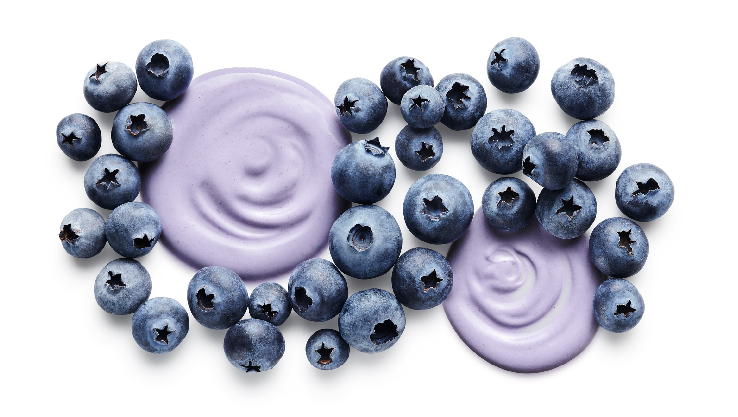Blueberry Photography for Odwalla Protein Shake